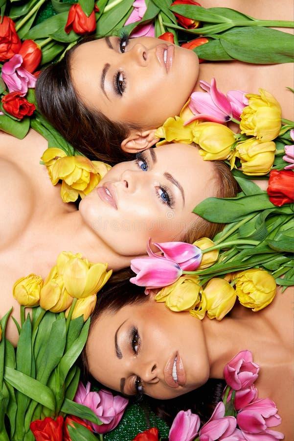 Donna nuda sensuale sulle rose fresche fotografia stock libera da diritti