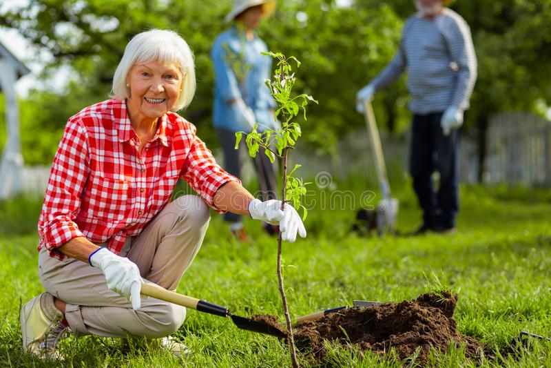Donna pensionata adorabile che sorride mentre piantando albero vicino agli amici fotografia stock