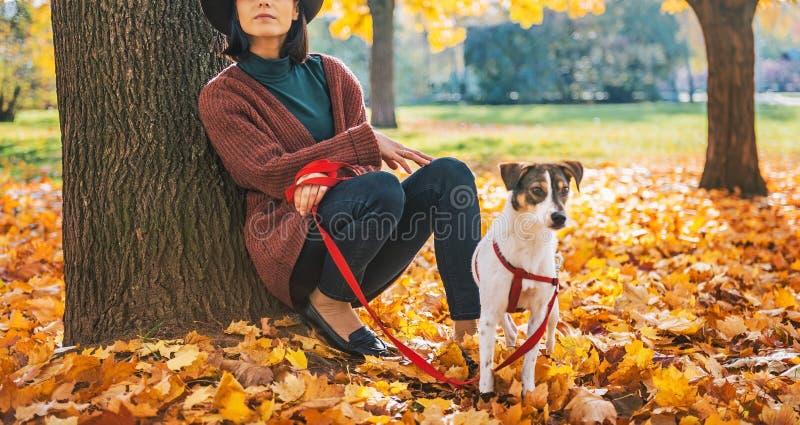 Donna premurosa con il cane all'aperto in autunno fotografie stock libere da diritti