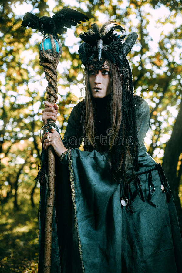 Donna-sciamano con i corni immagine stock libera da diritti