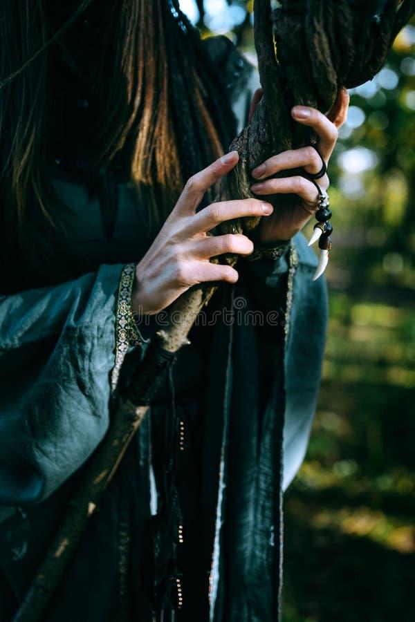 Donna-sciamano con i corni immagini stock