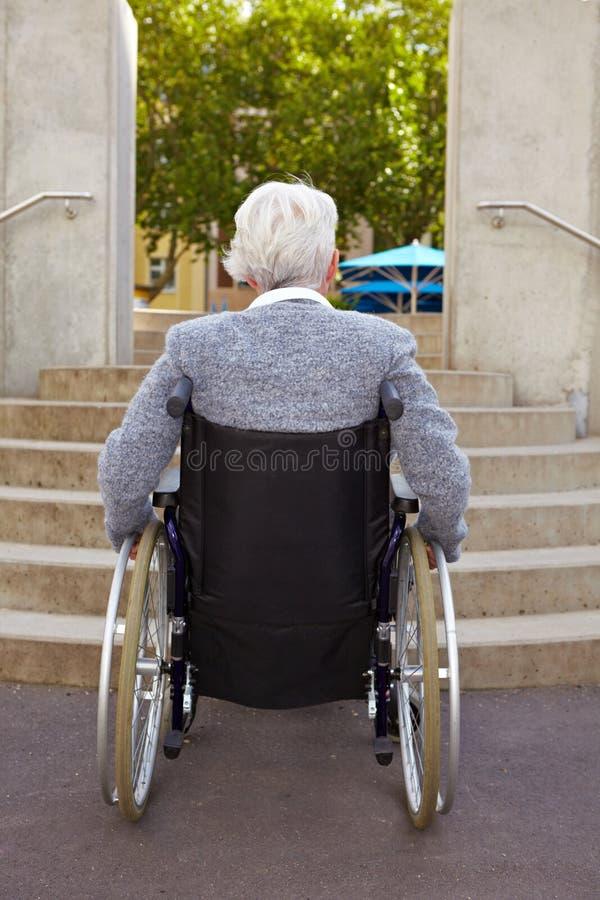 Donna in sedia a rotelle che esamina fotografie stock
