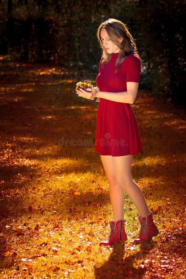 Donna sexy di autunno immagini stock