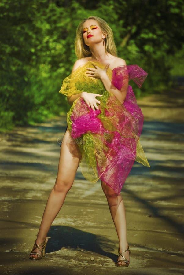 Donna sexy nella foresta fotografia stock libera da diritti