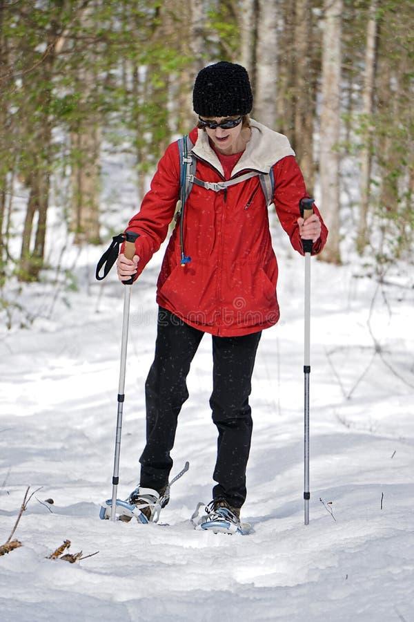 Donna Snowshoeing nel legno fotografia stock libera da diritti
