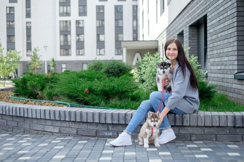 Donna sorridente che tiene il cucciolo sveglio del husky immagine stock