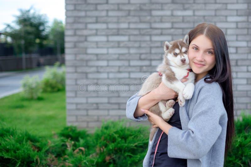 Donna sorridente che tiene il cucciolo sveglio del husky fotografia stock libera da diritti
