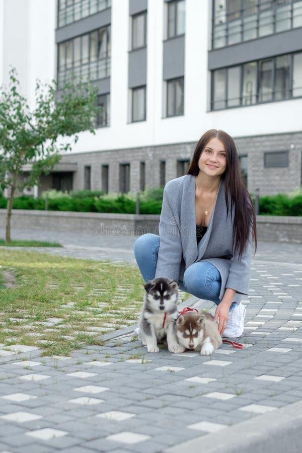 Donna sorridente che tiene il cucciolo sveglio del husky immagini stock