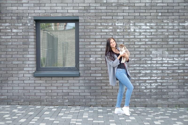 Donna sorridente che tiene il cucciolo sveglio del husky immagini stock libere da diritti