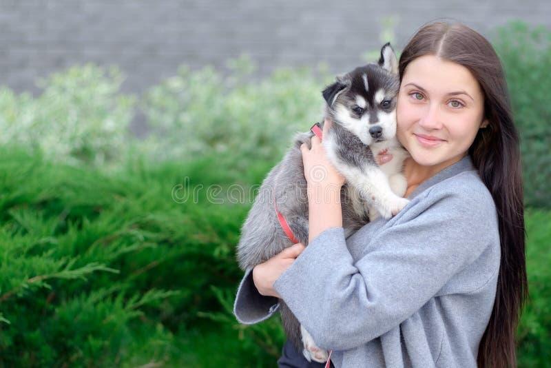 Donna sorridente che tiene il cucciolo sveglio del husky fotografie stock