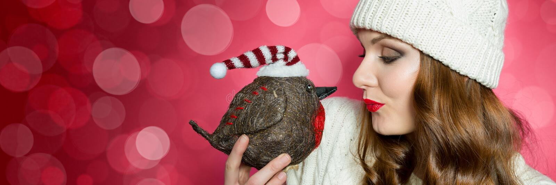 Donna splendida in saltatore tricottato e un cappello che invia ad un bacio al pettirosso l'uccello di natale Insegna divertente  immagine stock libera da diritti