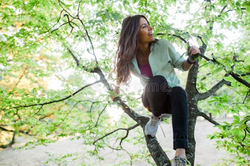 Donna su nell'albero divertendosi tempo fotografie stock