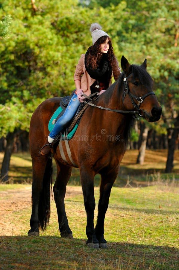 Donna sul cavallo fotografia stock