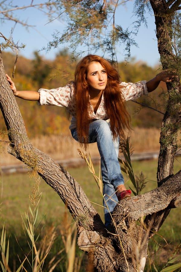 Donna sull'albero - Autumn Lifestyle fotografia stock libera da diritti