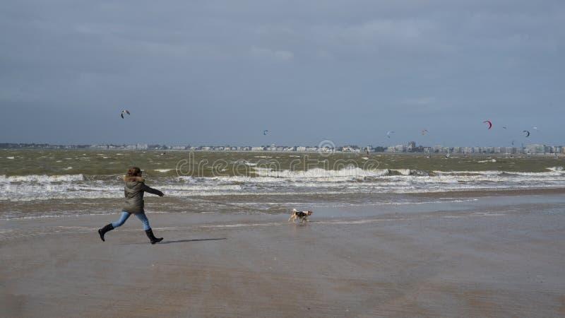 Donna sulla spiaggia con il suo cane fotografie stock