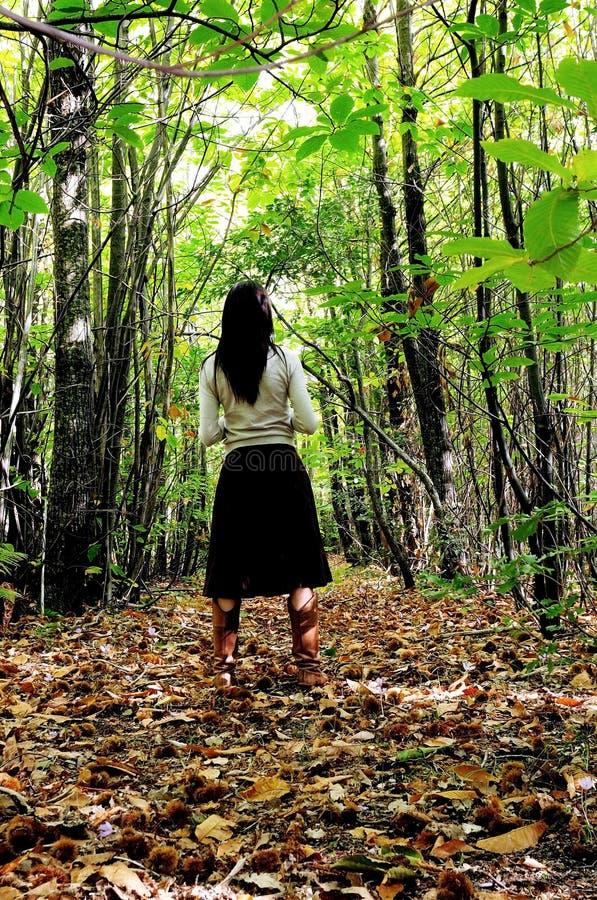 Donna in una foresta immagine stock libera da diritti