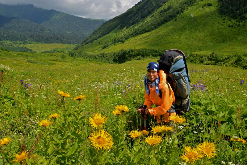 Donna in valle blossomy fotografia stock libera da diritti