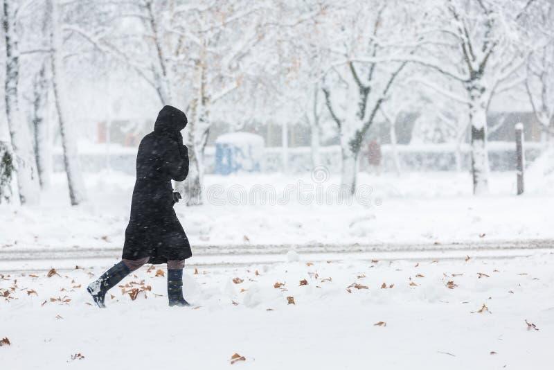 Donna vestita in cappotto nero che cammina da solo fotografia stock libera da diritti