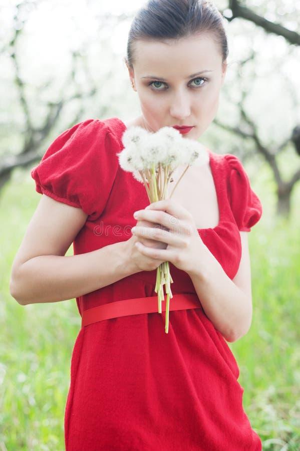 Donna in vestito rosso con il posy fotografia stock libera da diritti