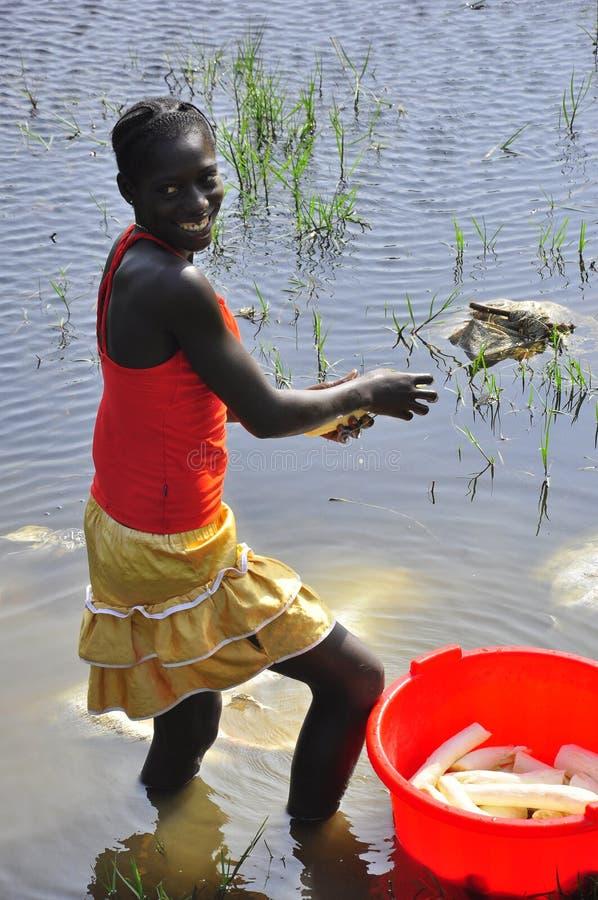 Donne africane che lavano manioca nel fiume fotografia stock