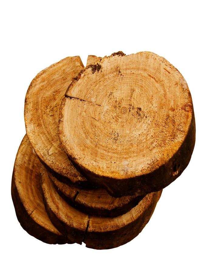 Donne au chêne une consistance rugueuse d'arbre images stock