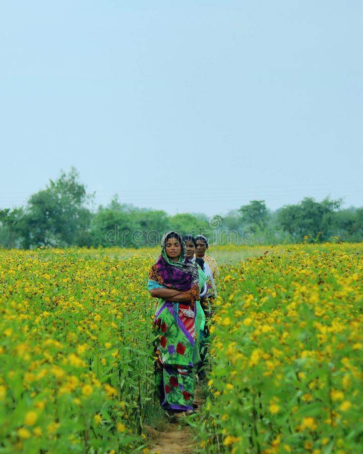 Donne in azienda agricola fotografia stock
