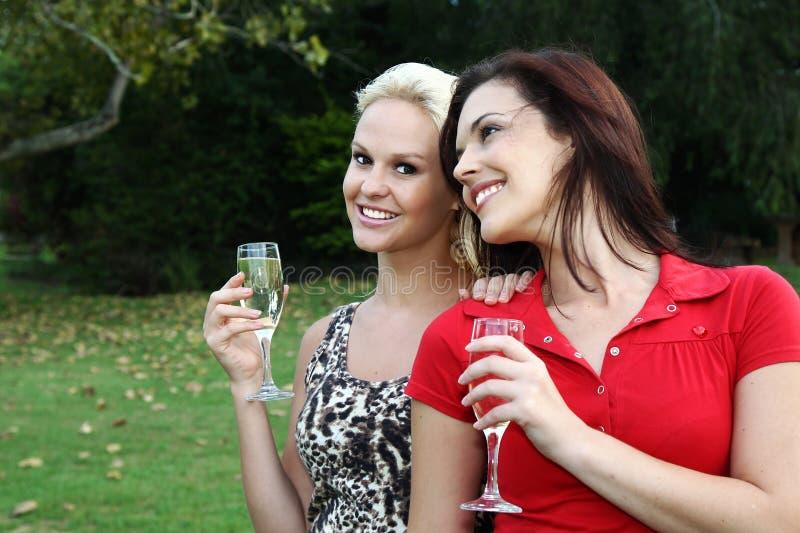 Donne belle che bevono vino all'aperto immagine stock
