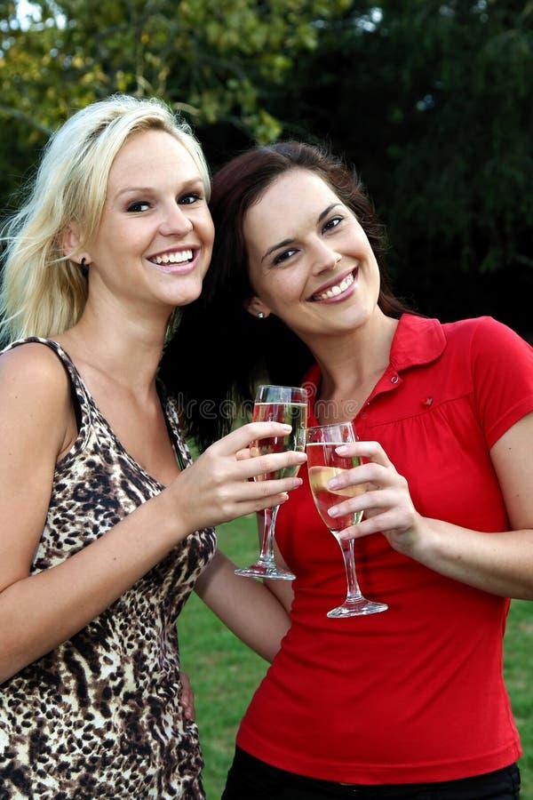 Donne belle che bevono vino all'aperto fotografia stock libera da diritti