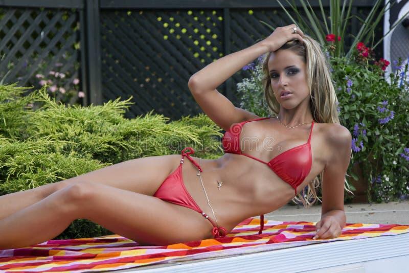 Donne in bikini immagine stock libera da diritti
