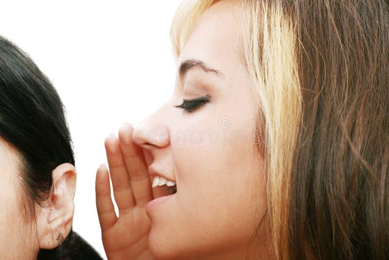 Donne che comunicano e che ascoltano il pettegolezzo fotografie stock