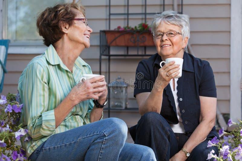 Donne che mangiano tazza di tè immagini stock