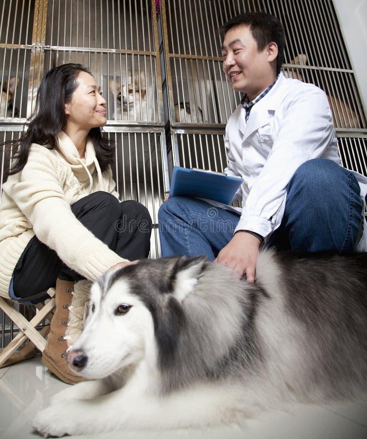 Donne con il cane di animale domestico che parla con veterinario fotografia stock