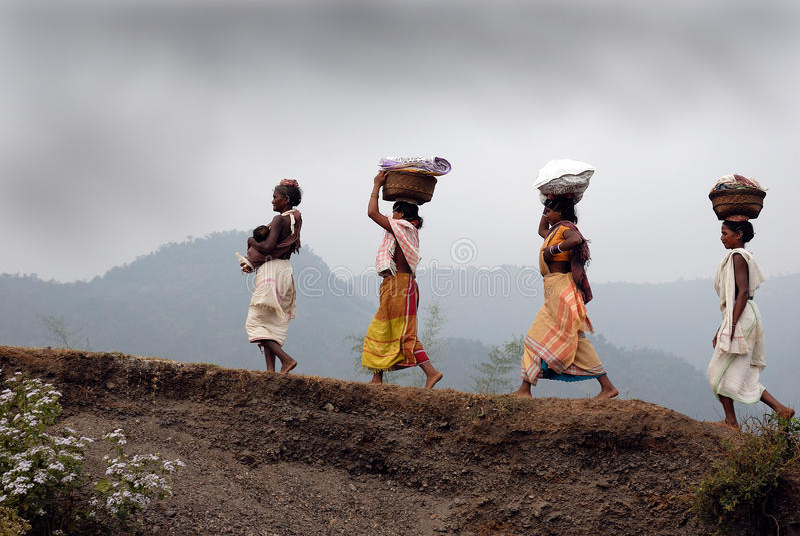 Donne dei tribeâs di Dongria Kondh in Orissa-India immagine stock