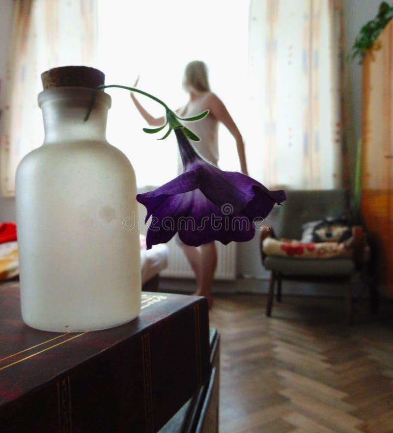 Donne del fiore fotografie stock libere da diritti