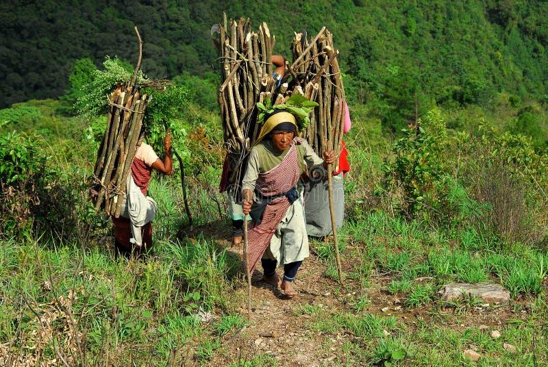 Donne della montagna in India immagini stock