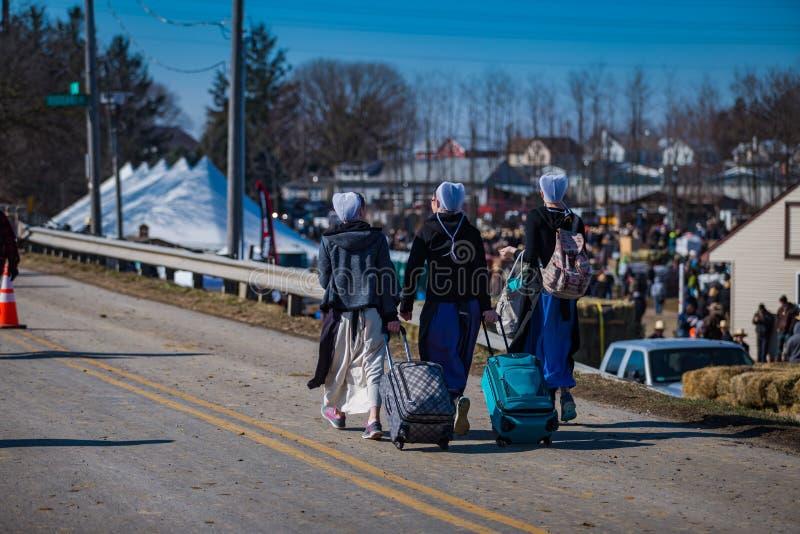 Donne di Amish con i pacchetti immagine stock libera da diritti