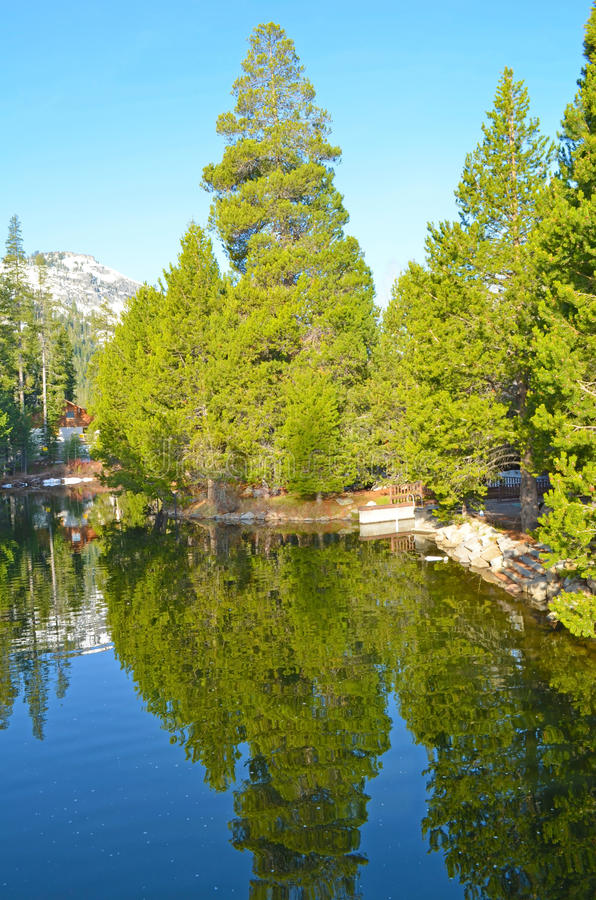 Donner Lake Park 2 royalty free stock photo