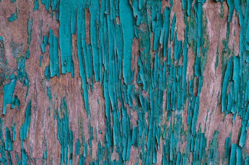 Donnez à éplucher une consistance rugueuse la peinture verte sur un conseil en bois sur le cadre entier photo libre de droits