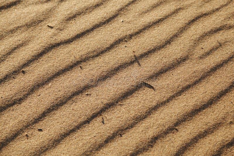 Donnez ? la surface une consistance rugueuse ar?nac?e avec les ondulations constitu?es par le sable de vent Fond de texture de du photos stock