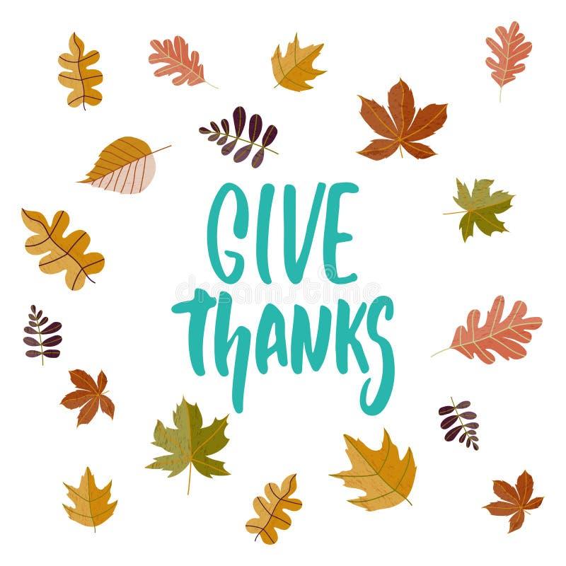 Donnez les mercis - expression tirée par la main de lettrage de Thanksgiving de saisons d'automne d'isolement sur le fond blanc A illustration de vecteur