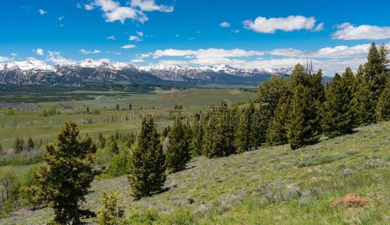 Donnez sur sur le chemin détourné scénique de dent de scie, Idaho photos libres de droits