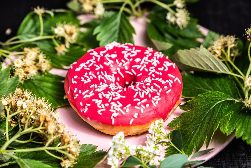 Donut. Sweet icing sugar food. Dessert colorful snack. Treat from delicious pastry breakfast. Doughnut with frosting. Donut on a plate in the leaves. Sweet icing royalty free stock photography