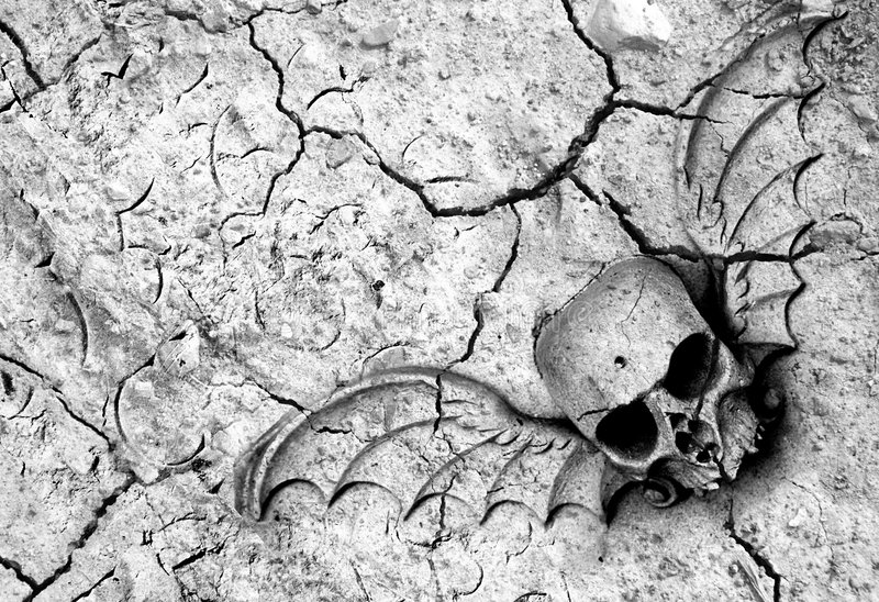Dood in grond stock foto
