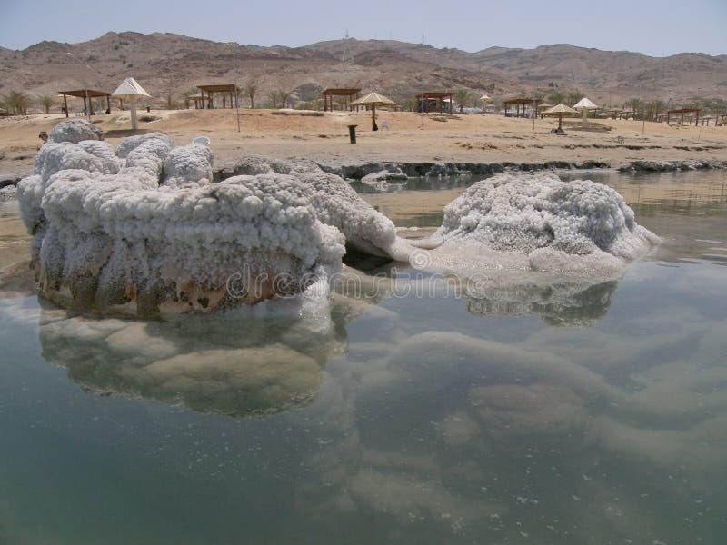Dood Overzees strand stock fotografie