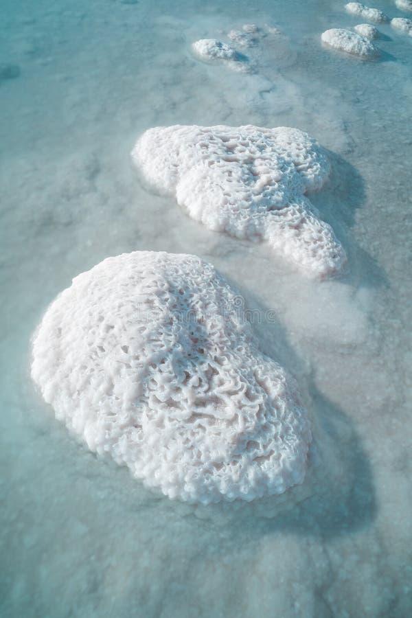 Dood Overzees zout royalty-vrije stock afbeeldingen