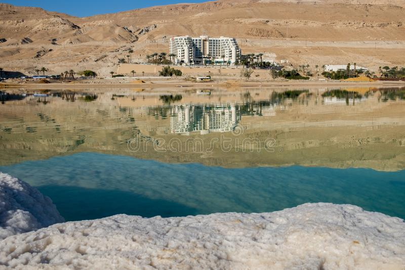 Dood overzees zout op strand bij zonsopgang israël stock afbeeldingen