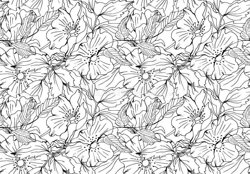Doodle bezszwowy wektorowy kwiecisty wzór royalty ilustracja