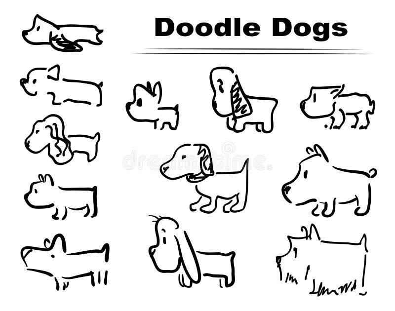 Doodle dog 002 stock photo