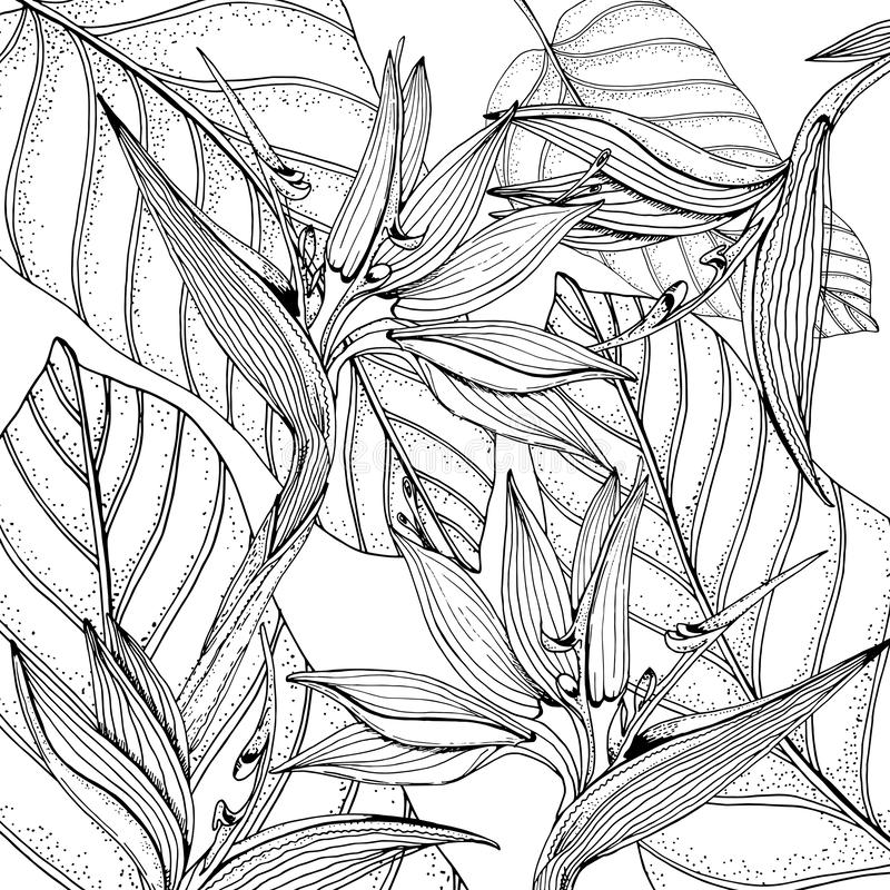 Coloring Page Flowers Leaves Vector Pattern Stock Vector (Royalty ... | 800x800