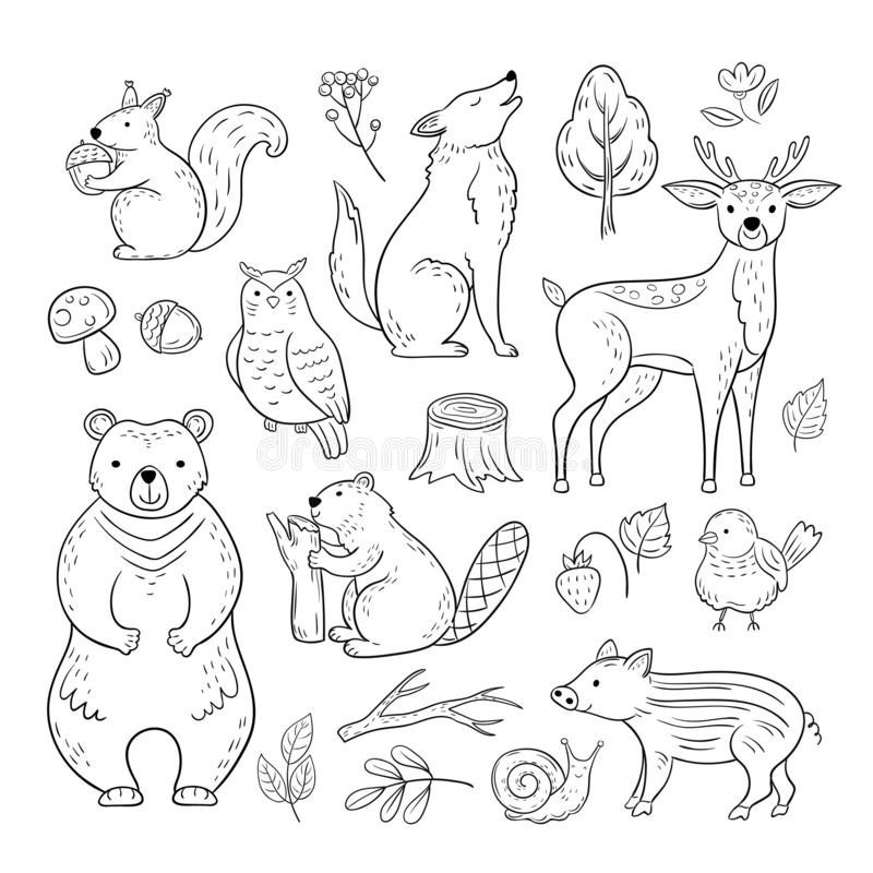 Doodle forest animals. Woodland cute baby animal squirrel wolf owl bear deer snail childrens sketch vector hand drawn stock illustration